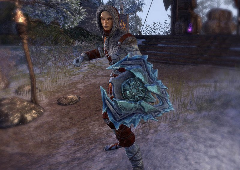 High Elf showcasing a Rkindaleft Weapon Shield during the New Life Festival in ESO