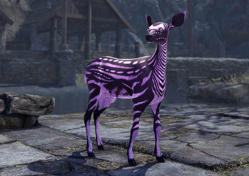 Orchidfall Vale Fawn Pet lost treasures of skyrim event eso
