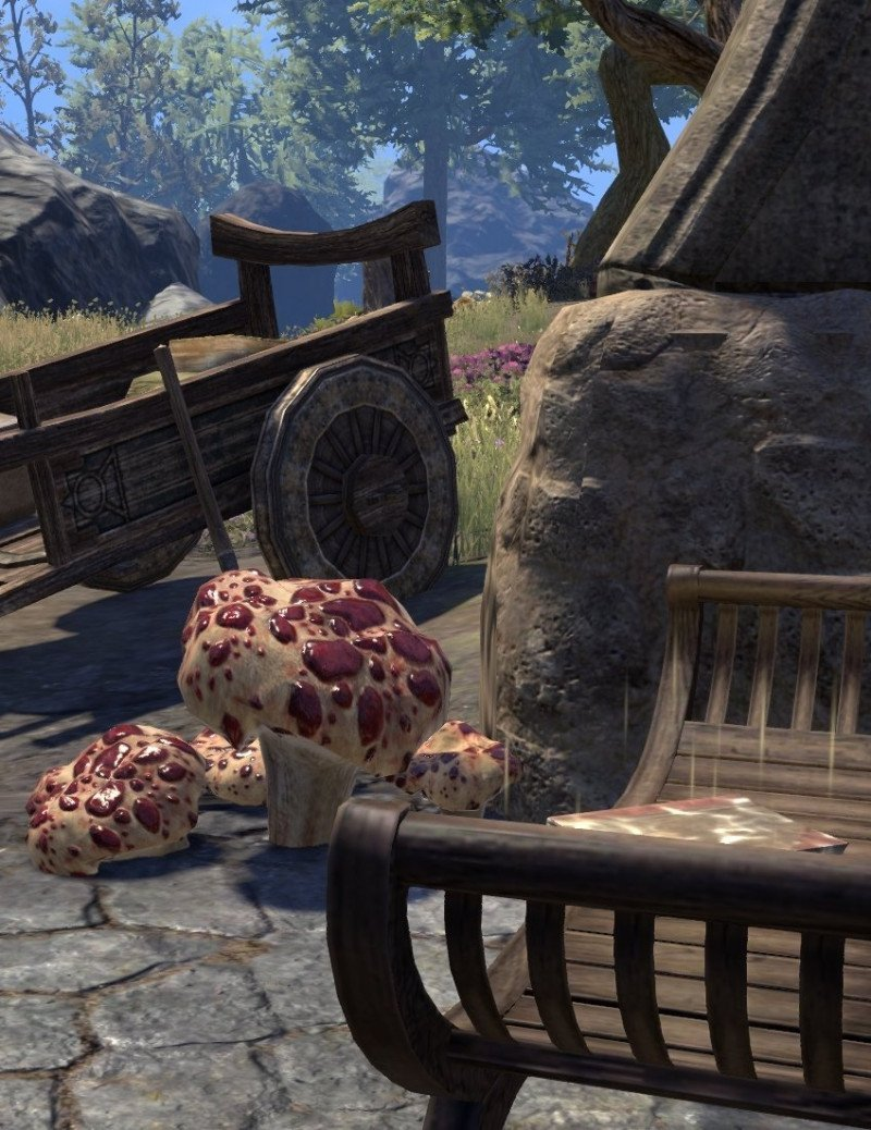 Sermons of Vivec 34 just east of Pulk on a bench next to a metal arch