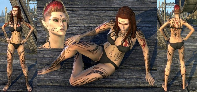 High Elf with Shattered Chivalry Body and Face Tattoos from Red Petal Bastion and Dread Cellar in ESO