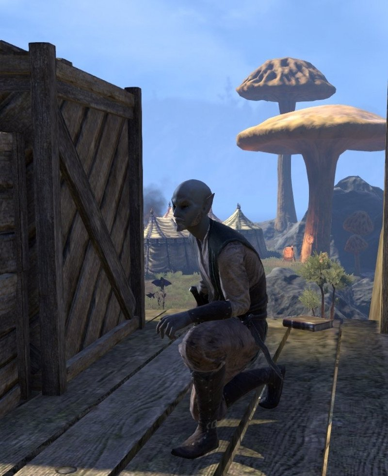 Sermons of Vivec 10 in Vivec City on a wooden platform northwest of Foundation's Embrace, next to Suvaris Othrenim in ESO