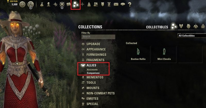 Collectibles menu where you can find in your collections the allies section with the companions and which you have collected so far