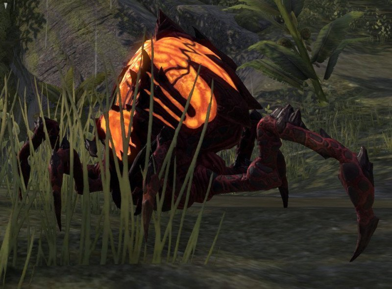 Scorion Pyreling pet reward in ESO