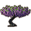 Tree, Purple Wisteria